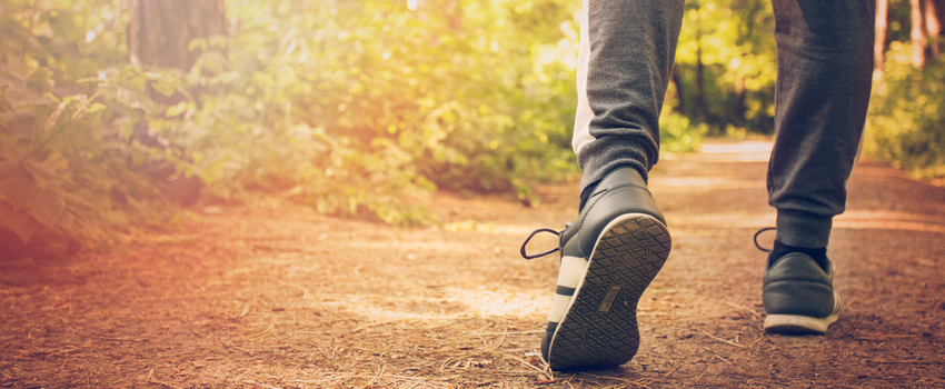 Close up of a man's legs jogging through woods